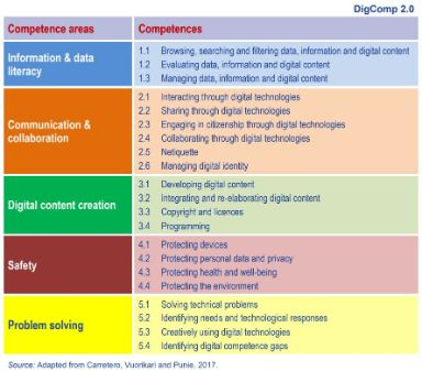 DigComp2.0: The Digital Competence Framework for Citizens